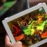 Những game bạn 'phai chơi' khi sử dụng iPad